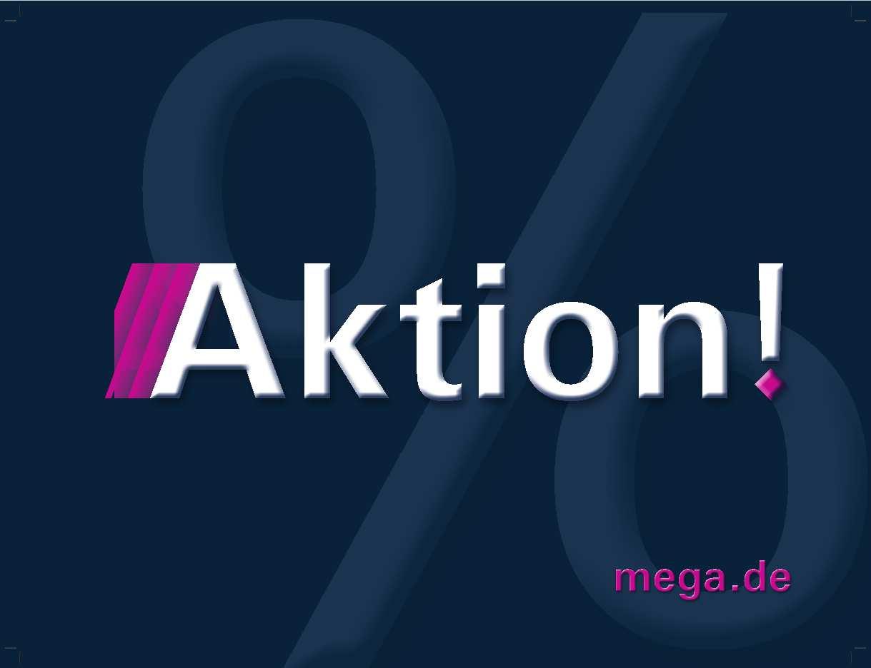 MEGA NEU Palettenbanderole_Aktion_H310cm x 410 cm_RZ-p1